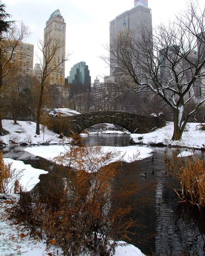 Central Park New York City Gapstow Bridge
