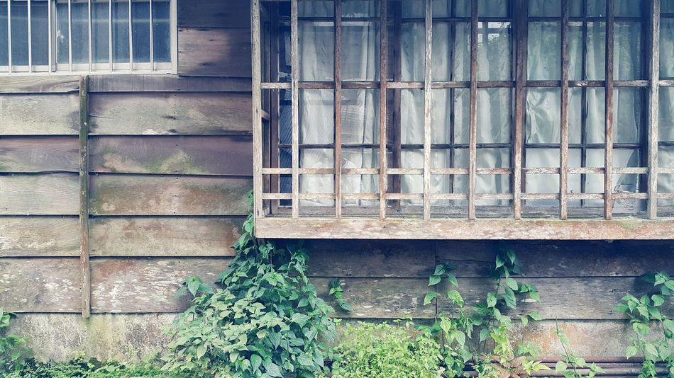 Window Outdoors Relaxing Traveling In Taiwan On The Road Taking Photos Enjoying Life