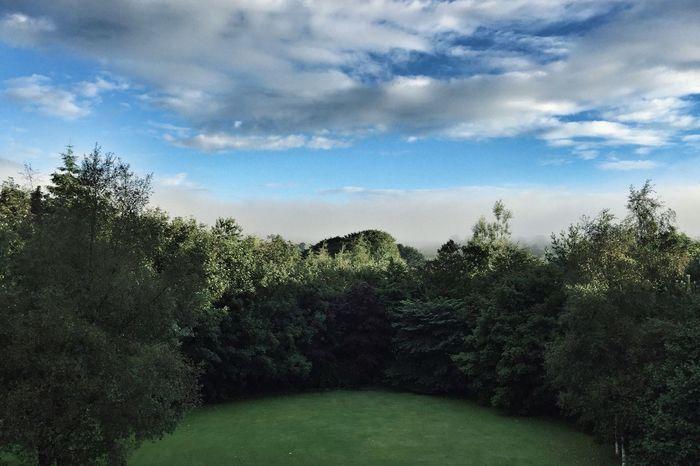 Good Morning, Ireland! ☘ Landscape Ireland Trees Cloud
