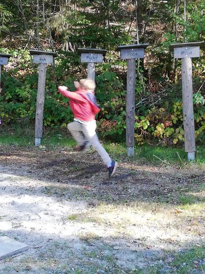 Childhood Full Length Jumping Sport Jungle Gym Children