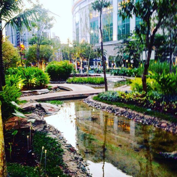 Garden Water Water Reflections Urban Urban Garden Big City Life