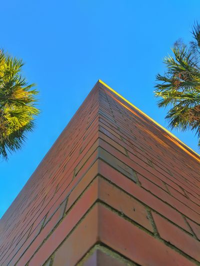 Blue No People Low Angle View Built Structure Building Exterior Architecture Sky Tree Clear Sky Day Outdoors USA Urban Skyline Modern Gainesville Fl