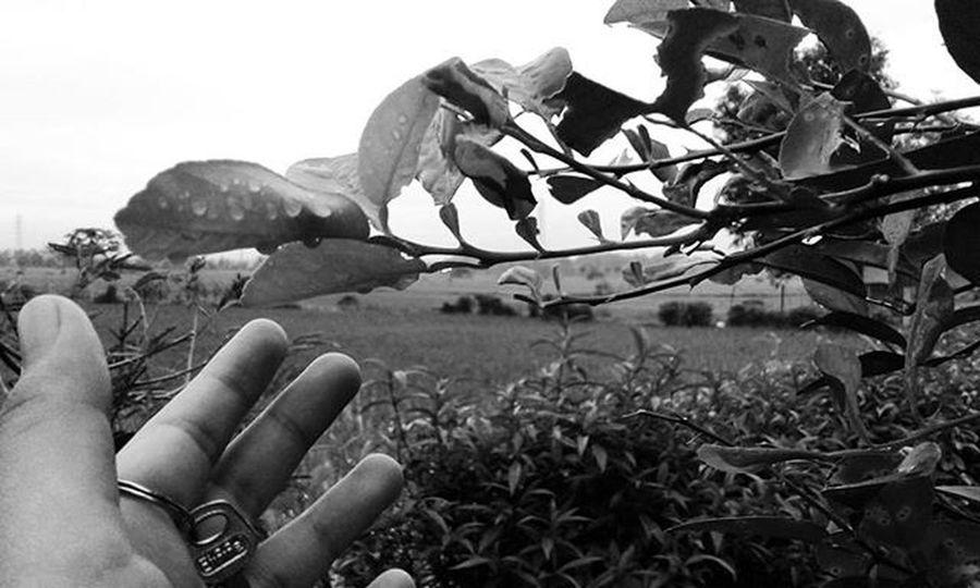 Selamat pagi .. . . . Biarkanku menggapaimu 🎵🎶😏😎 Anakikutikutan Fotograferjomblo Anaksoksibuk Sebentar2keluar Keluarbentar Jalanjalanmen Instashot Instalike