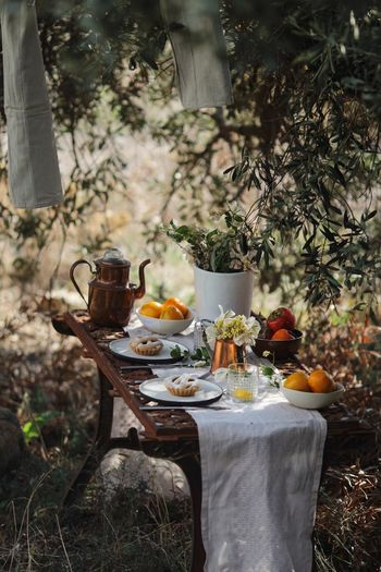 Food Garden Vintage Countryside Food And Drink Food Healthy Eating Plant Meal Wellbeing Nature Table Tree Drink Furniture No People Chair Vegetable Refreshment Celebration Seat Front Or Back Yard Household Equipment Bottle