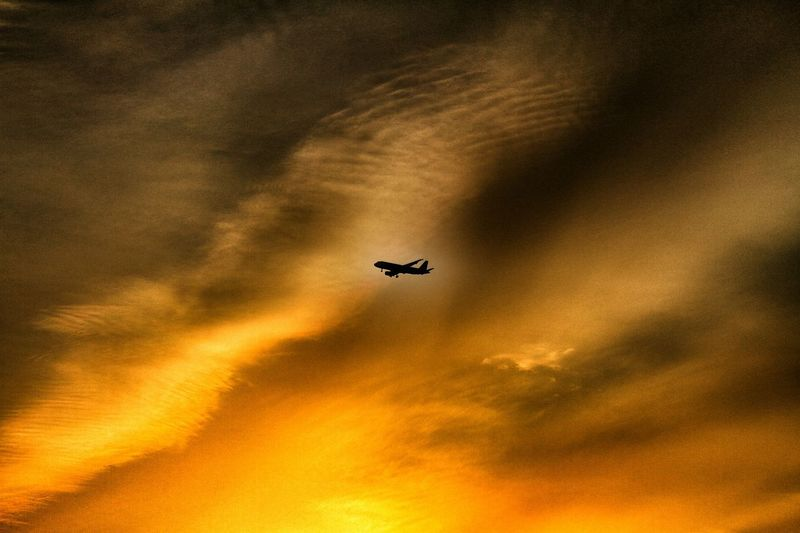 43 Golden Moments「黄昏ジェット機」 Twilight Airplane Sunset Silhouettes Sunset_collection Sunset Sky And Clouds Clouds And Sky Airplane Airplane Silhouette シルエット部 EyeEm Best Shots EyeEm Gallery EyeEm Best Edits EyeEm Best Shots - Sunsets + Sunrise 飛行機のある風景 飛行機 Taking Photos Taking Pictures EyeEmBestPics EyeEm The Best Shots Silhouette And Sky Silhouettes Silhouettes Of Sunset Silhouette Silhouette Collection Market Bestsellers 2017