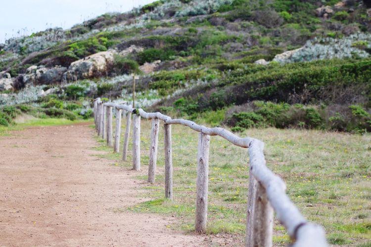 Siga el sendero Landscape Reservanatural TeamCanon CanonChile Los Molles Nature