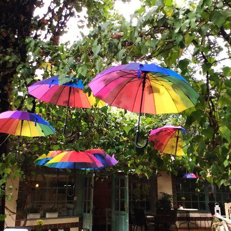 Rainbow Umbrella Rainbow Umbrella Outdoors Streetphotography Street