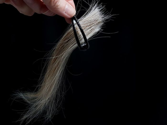 Cut Hair Hair Cut Hair Strands Holding Hair Clipper Human Hand Black Background Studio Shot Close-up