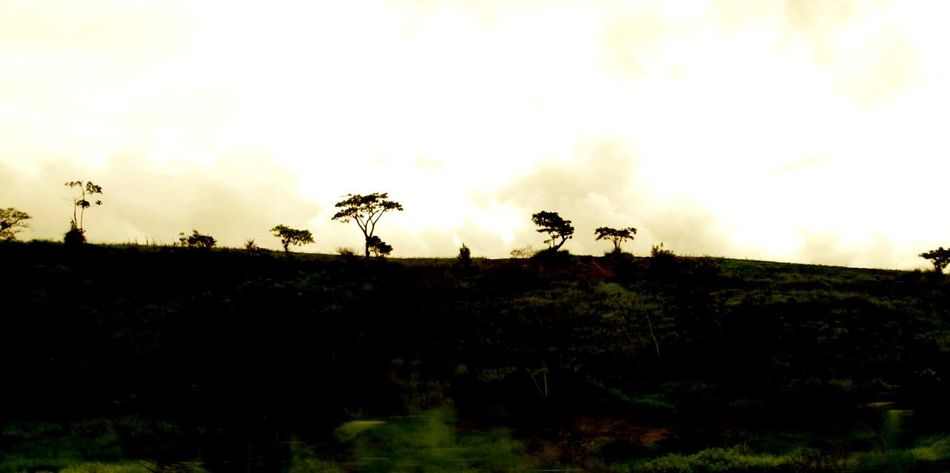 EyeEm Nature Lover Landscape #Nature #photography