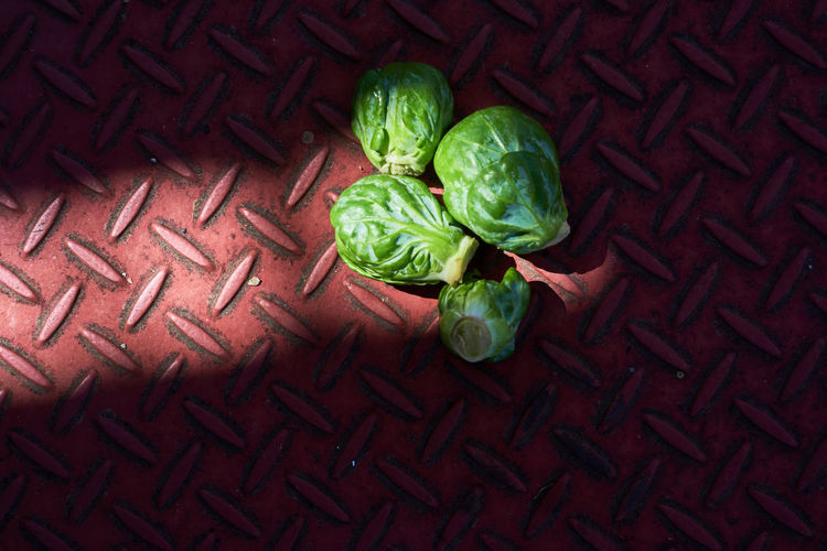 High angle view of brussels sprouts on floor