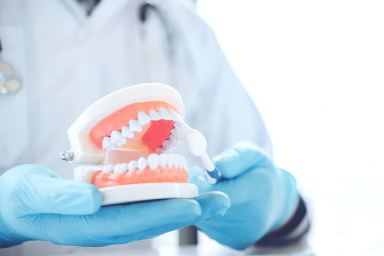 Midsection of dentist cleaning dentures in hospital