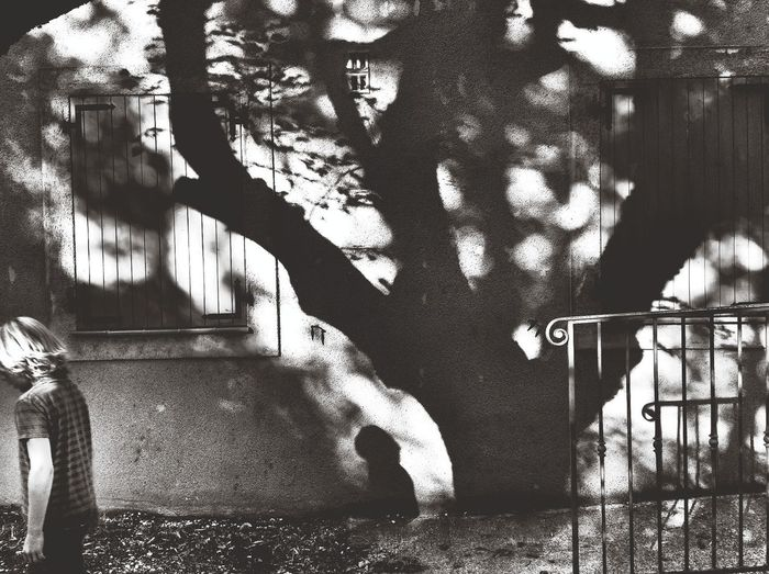 under the tree Blackandwhite Streetphoto_bw Blackandwhite Photography Bnw