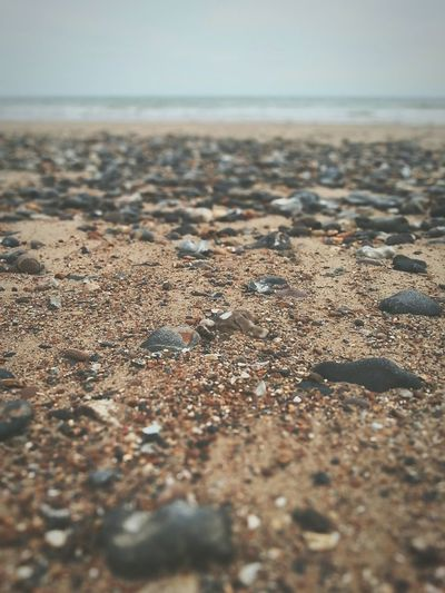Surface level of beach