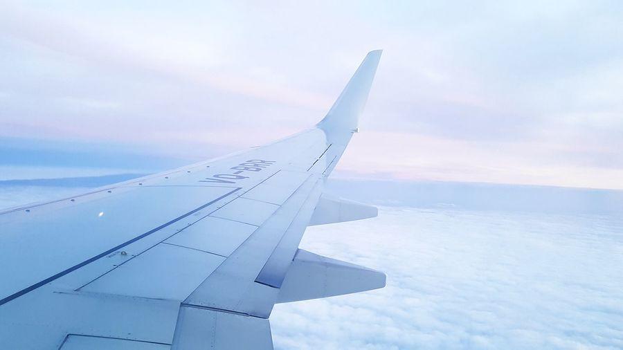 Flight to