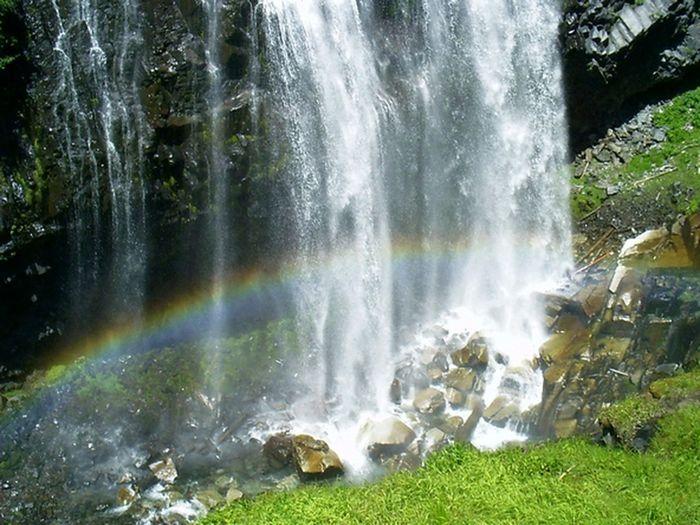 Narada Falls Waterfall Wildlife & Nature Nature's Diversities