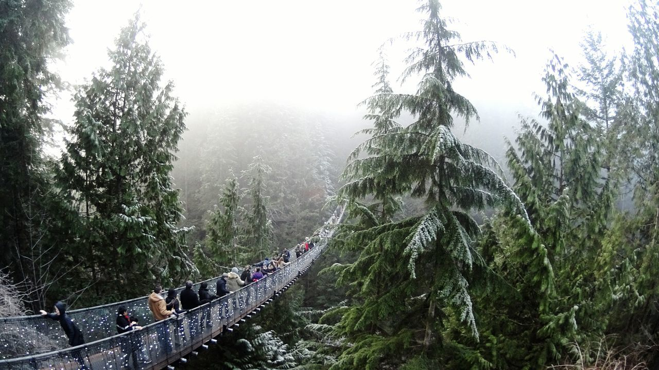 Panoramic View Of People On Suspension Bridge