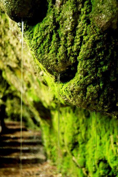Eye4photography  EyeEm Nature Lover Eyem Best Shots Eyem Gallery