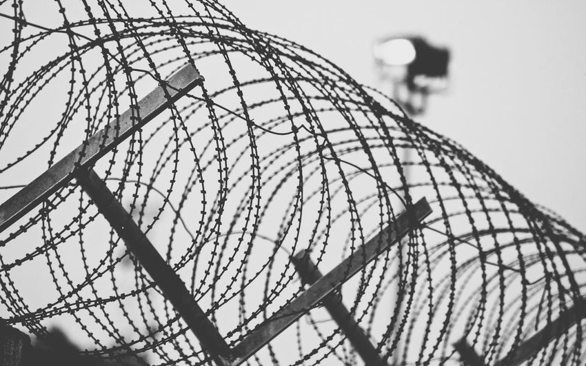 Close-up of razor barbed wire