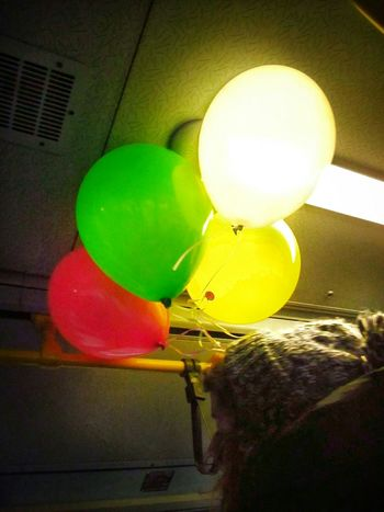 MyDay Niceday Girl Baloons Colorful Live Enjoying Life Life Inthebus Changeyourday From My Point Of View