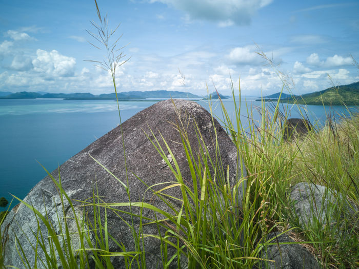 Stunning view and beautiful tropical island hillside overlooking sea at Sirongol Hill in Timbun Mata Island, Semporna, Sabah Malaysia. Semporna Sabah Malaysia Island Hill Ocean Landscape Plant Land Nature Day Grass No People Scenics - Nature Tranquility Tranquil Scene Beauty In Nature Outdoors Sky Water Sea Cloud - Sky Beach Growth Horizon Horizon Over Water Marram Grass