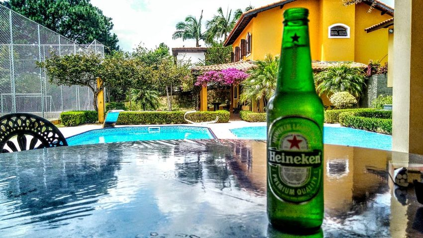 Beer Beerporn Building Exterior Nature Plant Swimming Pool Tree