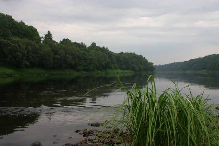 River Collection Day Grass Landscape Nature No People Outdoors Plant River River West Dvina Sky Tranquility Water