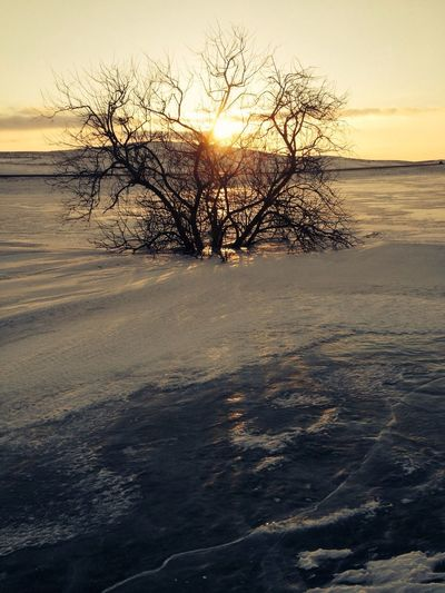 Sunset...Across the frozen pond. Frozen In Time