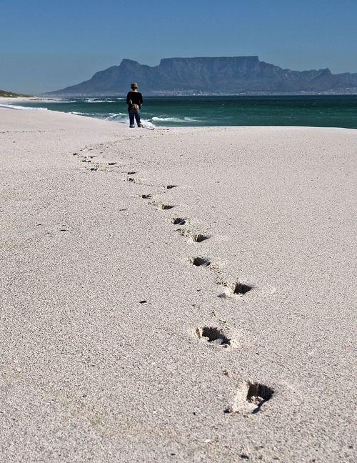 Beach Cape Town Capetown Coastline FootPrint Kapstadt Kapstadt Südafrika Sand Sand Dune Sea Southafrica Spuren Strand Summer Table Mountain Tafelberg Tafelberg Vacations Weekend Activities Landscapes With WhiteWall