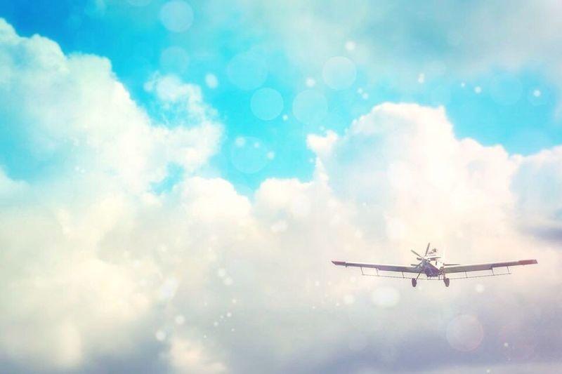 ᴴᴱ ᵂᴴᴼ ᴸᴱᴬᴾˢ ᶠᴼᴿ ᵀᴴᴱ ˢᴷᵞ ᴹᴬᵞ ᶠᴬᴸᴸ, ᴵᵀ'ˢ ᵀᴿᵁᴱ. ᴮᵁᵀ ᴴᴱ ᴹᴬᵞ ᴬᴸˢᴼ ᶠᴸᵞ. ~ᴸᴬᵁᴿᴱᴺ ᴼᴸᴵᵛᴱᴿ Rural America Cloudporn Sky_collection Airplane Airtractor At502 Agriculture Agplane Flight Agpilot Pastel Power