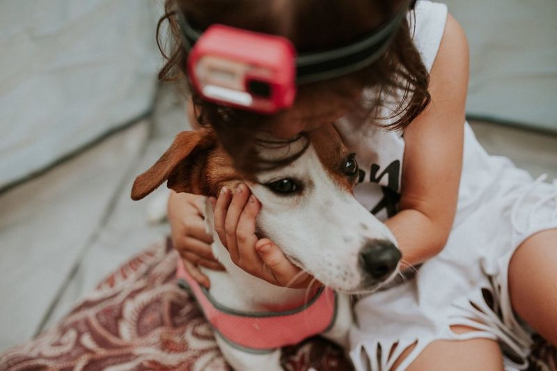 Real People Dog Pets One Animal Leisure Activity Domestic Animals Mammal Communication Lifestyles Front View One Person Young Adult Young Women Animal Themes Wireless Technology Indoors  Day Bonding Close-up