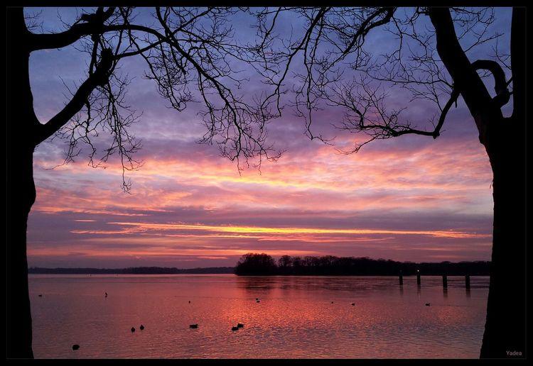 Berlin Tegel Tegeler See Greenwichpromenade Natur Wasser Sonnenuntergang Galaxy S2 Winter 2014 Yadea