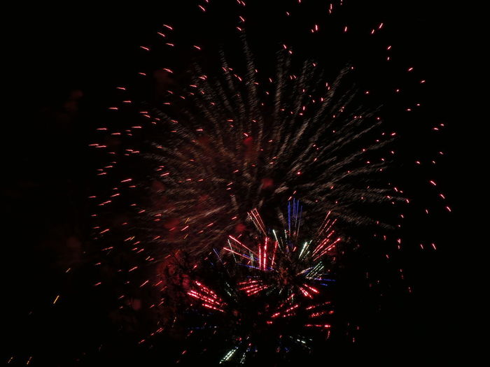 Celebration Night Firework Motion Illuminated Event Exploding Firework Display Arts Culture And Entertainment Nature No People Low Angle View Firework - Man Made Object