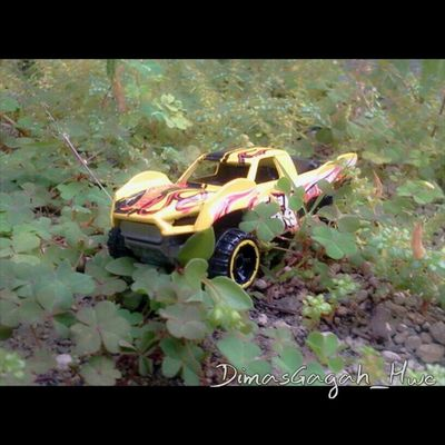 Offroad HW Hwloose Hwc HotWheels Hotweelscollection Hotwheelscollections Hotwheelsindonesian Hotwheelscollector Hotwheelsaddict Hotwheelsaddicted Diecast Diecast_addict Diecast_indonesia DiecastIndonesia Scale164 Instalike Instacollection Instacollectin Instacar Instatoys Store ToyCar Follow Followme explore nature photograpy
