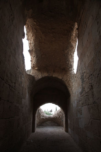 The amphitheater in El Jem, Tunisia Africa Amphitheater Ancient Arches Architecture Arena Built Structure Corridor El_jem Empire Erosion Gladiator, Heritage History Landmark Narrow Old Ruin Roman Stone Stone Wall Tunisia Unesco Wall - Building Feature