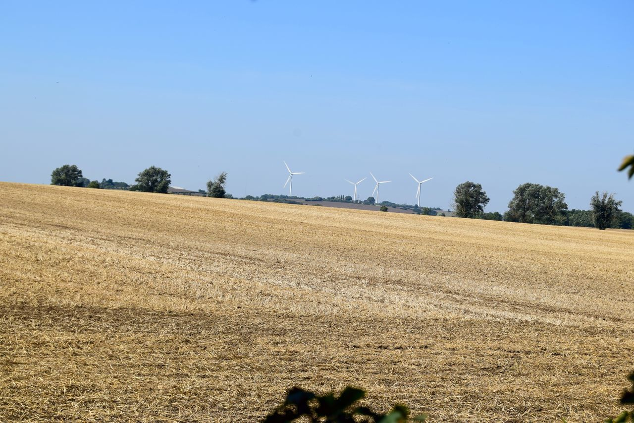 field, wind turbine, wind power, renewable energy, alternative energy, nature, agriculture, windmill, day, landscape, beauty in nature, fuel and power generation, outdoors, rural scene, industrial windmill, tranquility, clear sky, blue, no people, scenics, sky, tree
