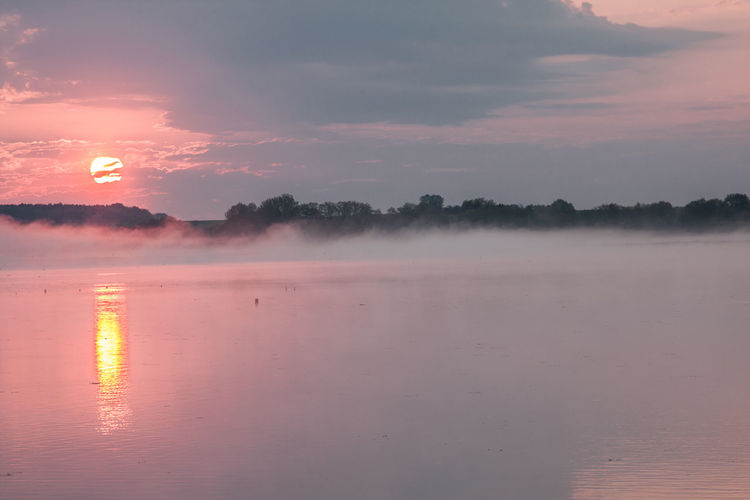 Federsee Beauty In Nature Day Fog Foggy Morning Nature No People Outdoors Reflection Scenics Sky Sun Sunset Tranquil Scene Tranquility Water