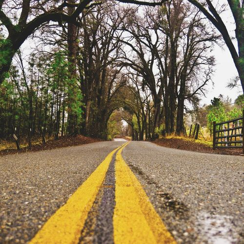 Ontheroadagain Nature Hwy Roadtrip Trees