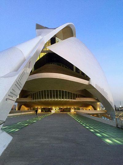 Spain Valencia Palau de les Arts Reina Sophia Architecture Built Structure Building Exterior No People Sky City Clear Sky