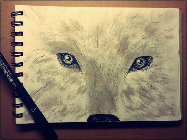 Drawing with Ashes . My Artworks Art My Hobby