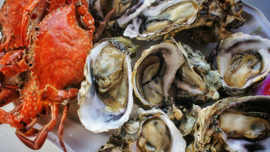 Close-up of crabs and oysters in plate