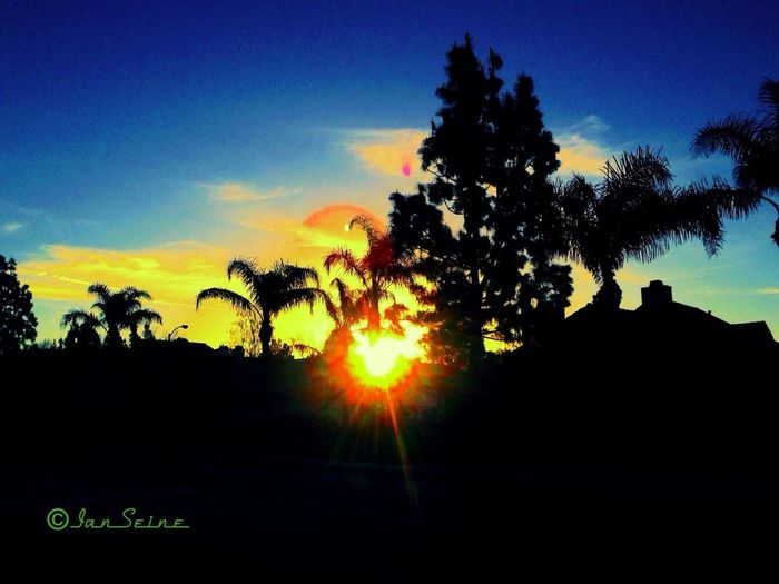 Skyporn Sun_collection Sunrise_sunsets_aroundworld Good Morning