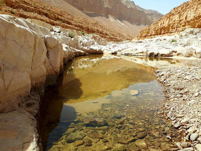 The Judean Desert Judean Desert Israel Negev  Water Reflections Water In The Desert Salt - Mineral Arid Climate Geology