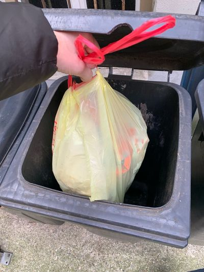 Waste Throw Away Dustbin Waste Management Waste One Person Holding Hand Adult Bag Human Hand Human Body Part Plastic Bag