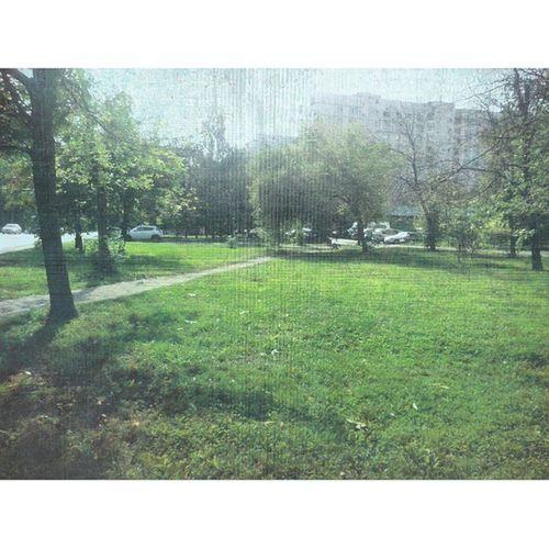 Прощайте, тёплые деньки! ктотоотупел отрадное Москва Россия свао зеленый осень moscow russia svao green autumn