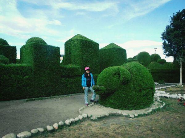 #trip Cementery Esculture Ciprés Elefant