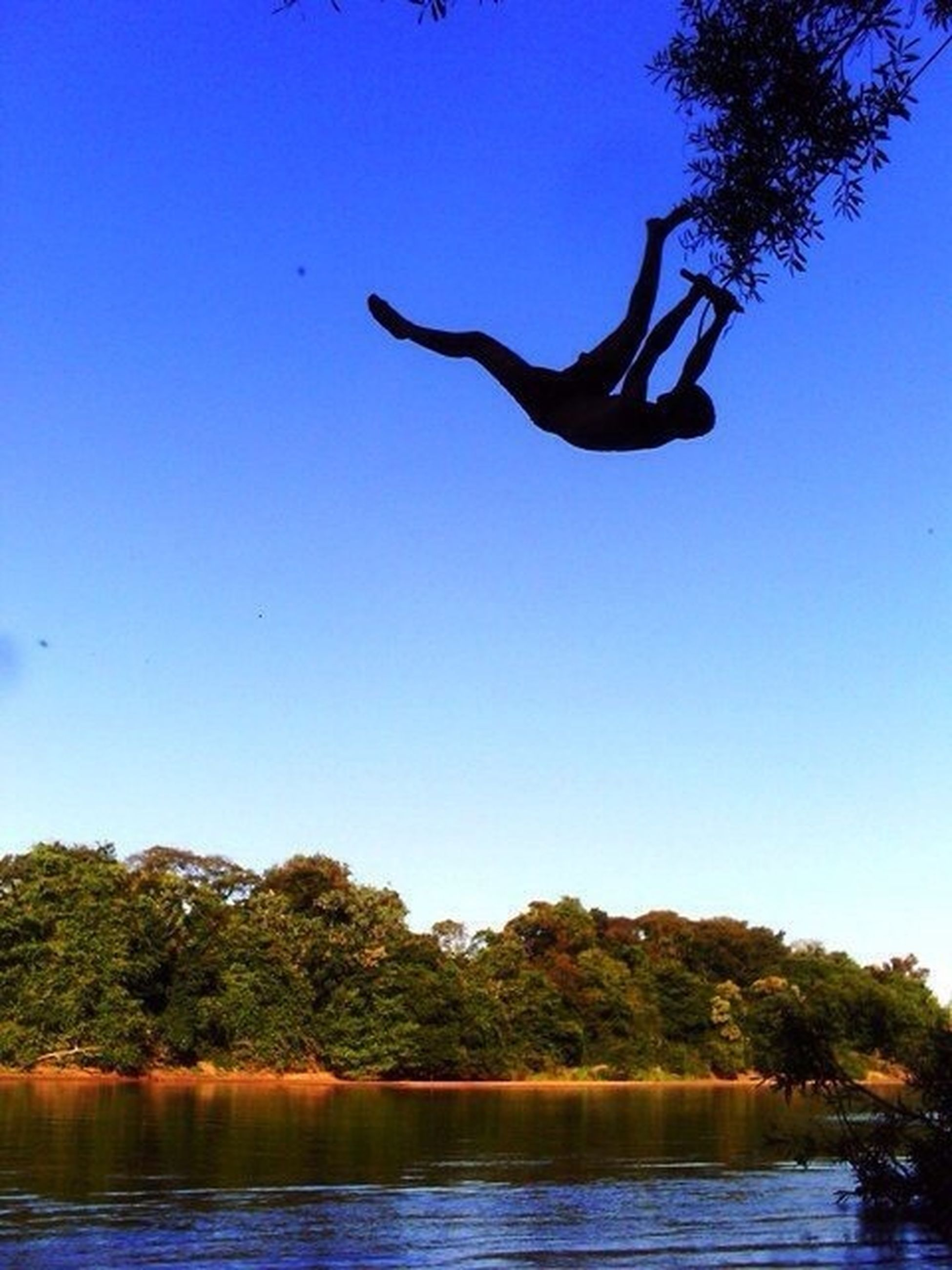 leisure activity, water, tree, blue, lifestyles, clear sky, mid-air, jumping, enjoyment, men, fun, waterfront, full length, adventure, freedom, extreme sports, vacations, low angle view