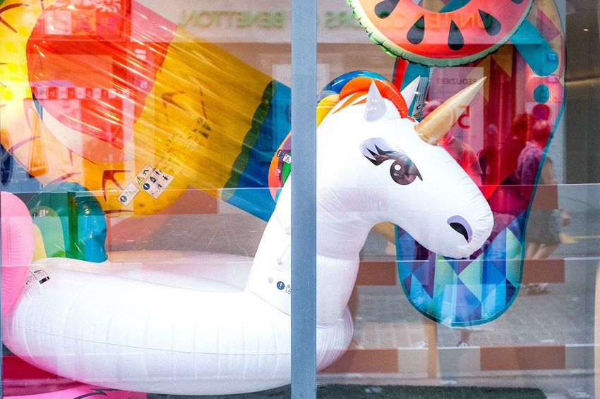 Rainbow Colors Colorful Color Explosion Colorsplash Swimming Swimming Animal Playtime Unicorn EyeEm Selects Multi Colored Creativity Representation Art And Craft Human Representation No People Toy Still Life Indoors  Day High Angle View Close-up Variation