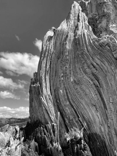 Close-up of rock formation against sky