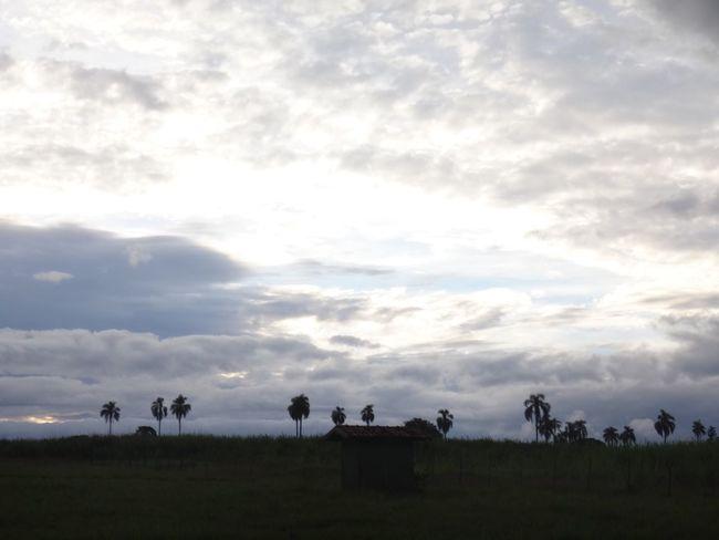 AVARE SP BRAZIL Atmosphere Atmospheric Mood Cloud Cloud - Sky Cloudscape Cloudy Distant Dramatic Sky Moody Sky Orange Color Outdoors Overcast Remote Silhouette Sky Storm Cloud Sunset Tranquil Scene