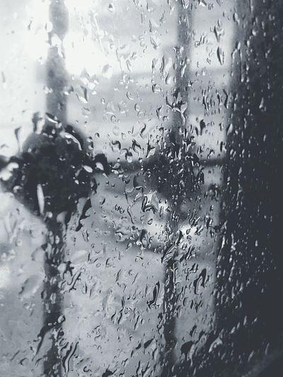 💦Let the rain wash away all the pain of yesterday..!👌💝 Followme Following Followers Home Sweet Home Rainy Days تصويري  First Eyeem Photo Algeriangirl اقتباسات Check This Out Enjoying Life Taking Photos Hanging Out الناس_الرايئه تصويري_تصميمي_عدستي_كاميرا_لايك_ تصويري♡ عرب_فوتو تصوير_العرب هاشتاقات_انستقرام_العربية هاشتاقات_صور تصوير_جالكسي Cold Days Rainshot Algeria Winter